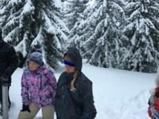 """Околиці сніголавинної станції """"Пожежевська"""". Дослідження снігового покрову"""