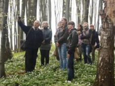 2012 р. Екскурсія із студентами ІІІ-го курсу в буковому лісі, смт.Брюховичі