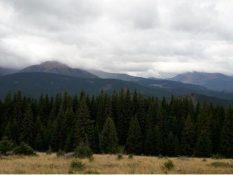 Осінні барви на полонині гори Кукул